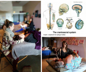 biodynamic craniosacral therapy training in vernon bc