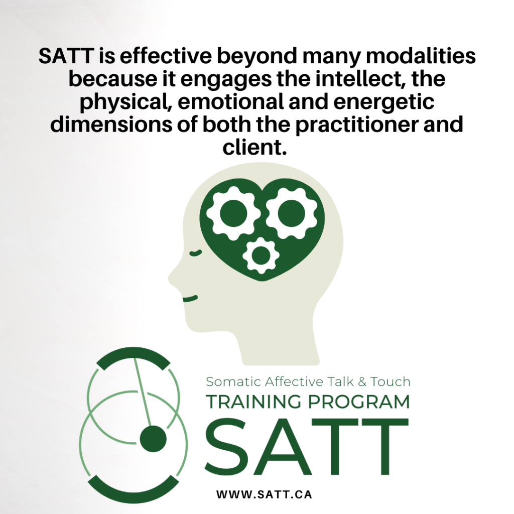 somatic affective talk and touch therapeutic synthesis new training program vernon bc